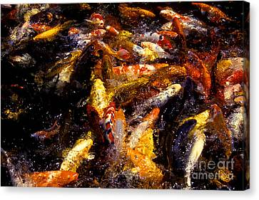 Koi By The Dozen Canvas Print by Paul W Faust -  Impressions of Light