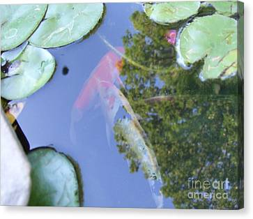 Canvas Print featuring the photograph Koi by Deborah DeLaBarre