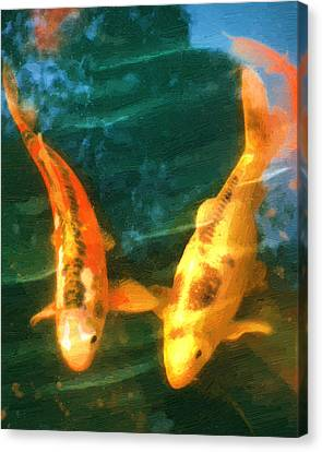 Koi Friends Canvas Print by Doug Kreuger