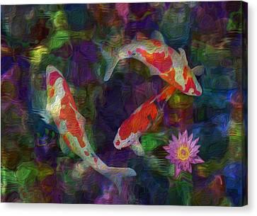 Koi Canvas Print by Jack Zulli