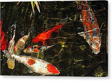 Koi Joy Canvas Print by Suzy Piatt