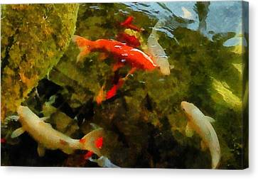 Koi Pond Canvas Print by Michelle Calkins