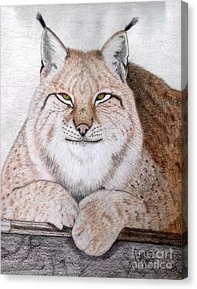 Koschka Canvas Print by Becca Miller