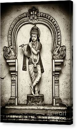 Krishna Temple Statue Canvas Print by Tim Gainey
