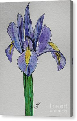 Kristinas Iris Canvas Print by Marcia Weller-Wenbert