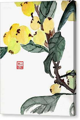 Kumquats  Chinese Watercolor Painting Canvas Print by Merton Allen