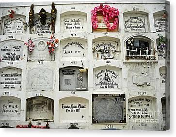La Ciudad Blanca Cemetery Canvas Print by Sami Sarkis