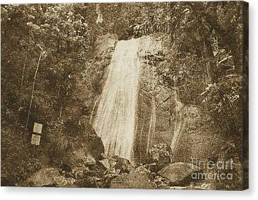 La Coca Falls El Yunque National Rainforest Puerto Rico Print Vintage Canvas Print by Shawn O'Brien