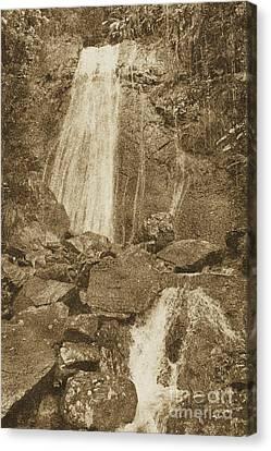 La Coca Falls El Yunque National Rainforest Puerto Rico Prints Vintage Canvas Print by Shawn O'Brien