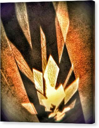 Canvas Print featuring the photograph La Flamme Qui Enflamme Sans Bruler by Steven Huszar