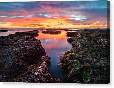 Stacked Canvas Print - La Jolla California Reflections by Larry Marshall