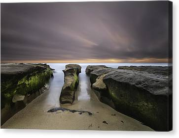 La Jolla Reef Canvas Print