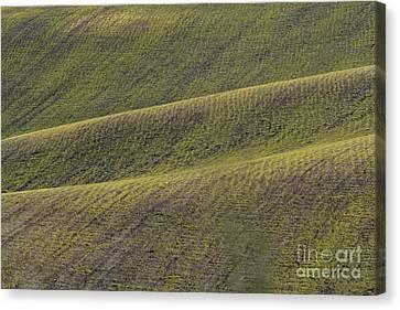 La Mancha Landscape - Spain Series-dos Canvas Print by Heiko Koehrer-Wagner