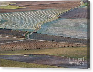 La Mancha Landscape - Spain Series-ocho Canvas Print by Heiko Koehrer-Wagner