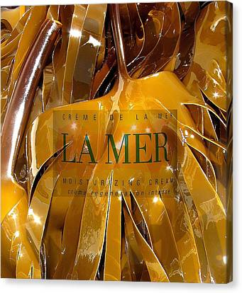La Mer Creme Canvas Print by Donnie Freeman