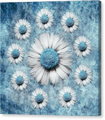 La Ronde Des Marguerites - Blue V02 Canvas Print by Variance Collections