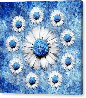 La Ronde Des Marguerites - Blue V05 Canvas Print by Variance Collections