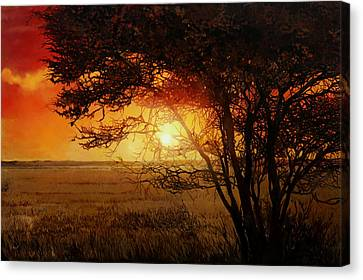 La Savana Al Tramonto Canvas Print by Guido Borelli
