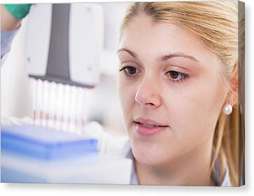 Lab Assistant Using Multi Pipettes Canvas Print