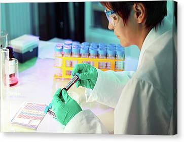 Lab Technician Holding Test Tube Canvas Print by Wladimir Bulgar