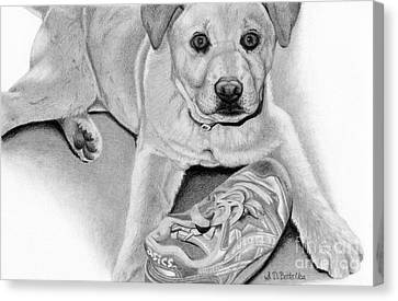 Black And Yellow Canvas Print - Sneaker Snatcher- Labrador And Chow Chowx Mix by Sarah Batalka