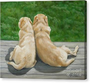 Labrador Lazy Afternoon Canvas Print