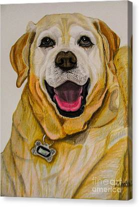 Golden Lab Canvas Print - Labrador Retriever Drawing by Zina Stromberg
