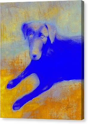 Labrador Retriever In Blue And Yellow Canvas Print by Ann Powell