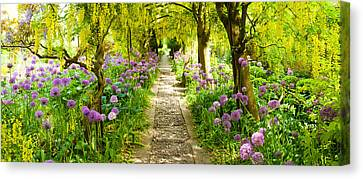 Laburnum Trees At Barnsley House Canvas Print by Panoramic Images