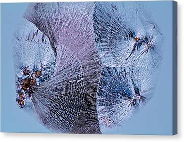 Lactose Crystals Canvas Print by Antonio Romero