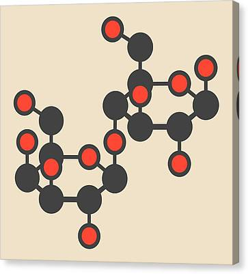 Lactose Milk Sugar Molecule Canvas Print by Molekuul