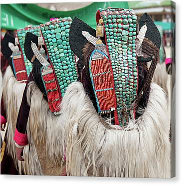 Yak Canvas Print - Ladakh, India Married Ladakhi Women by Jaina Mishra