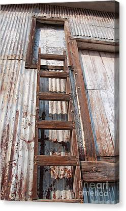 Old Feed Mills Canvas Print - Ladder 1 by Minnie Lippiatt
