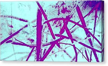 Ladder Canvas Print by Dorothy Rafferty