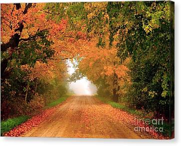 Lady Autumn Canvas Print by Terri Gostola
