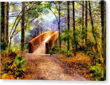 Lady Bird Johnson Grove Bridge Canvas Print by Kaylee Mason