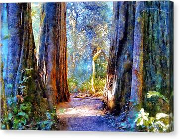 Lady Bird Johnson Grove Canvas Print by Kaylee Mason