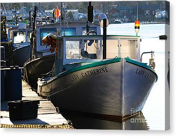 Lady Catherine Canvas Print by Paul Noble