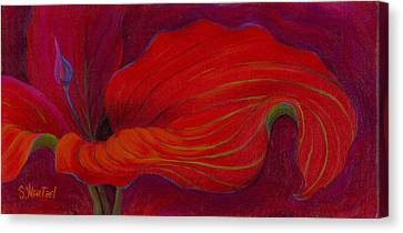 Canvas Print featuring the painting Lady In Red by Sandi Whetzel