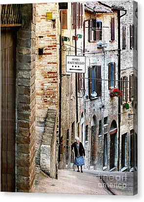Lady In Urbino Canvas Print