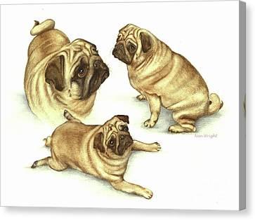 Lady Marmalade Of Lydiard Pug Canvas Print