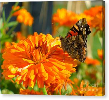 Lady On Orange Canvas Print