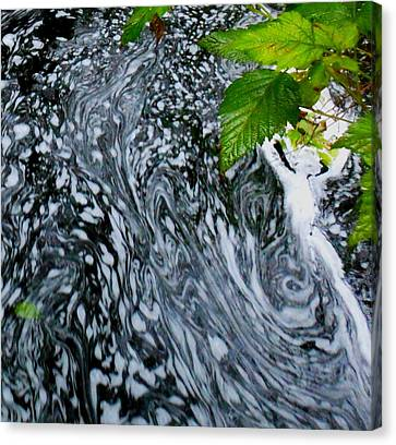 Canvas Print featuring the photograph Lady Suds by Karen Horn