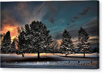 Lady Winter  Bringing A Cold Snap Canvas Print by Jeff S PhotoArt