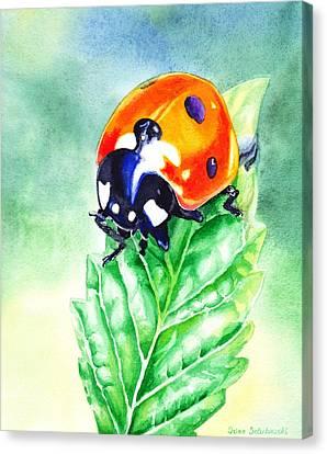 Ladybug Ladybug Where Is Your Home Canvas Print by Irina Sztukowski