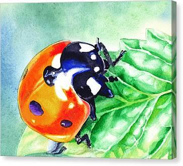 Ladybug On The Leaf Canvas Print by Irina Sztukowski