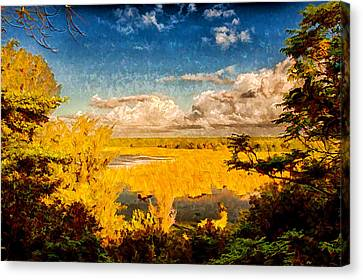 Lagoon View Canvas Print by Rene Rosado