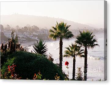 Laguna Beach At Daybreak  Canvas Print