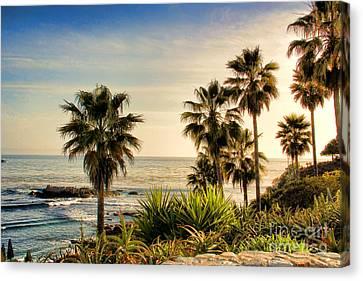 Laguna Beach Canvas Print by Mariola Bitner