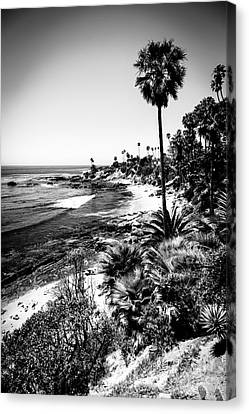 Laguna Beach Pacific Ocean Shoreline In Black And White Canvas Print by Paul Velgos